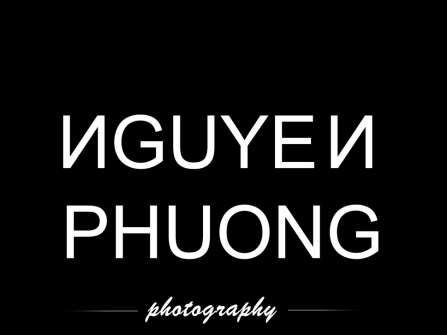 NGUYENPHUONG PHOTOGRAPHY