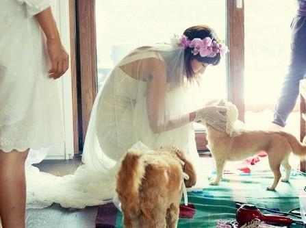 Chụp ảnh cưới với thú cưng
