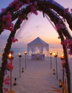 Tiệc cưới ngoài trời: Phương án dự phòng