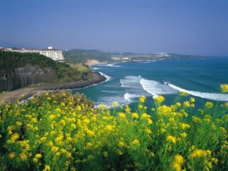 Trăng mật thiên đường đảo Jeju