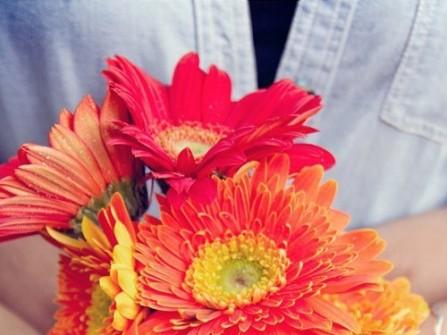 Chọn và bảo quản hoa để chụp ảnh cưới
