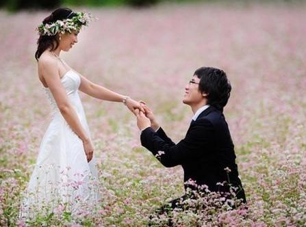 Chụp ảnh cưới cùng hoa tam giác mạch