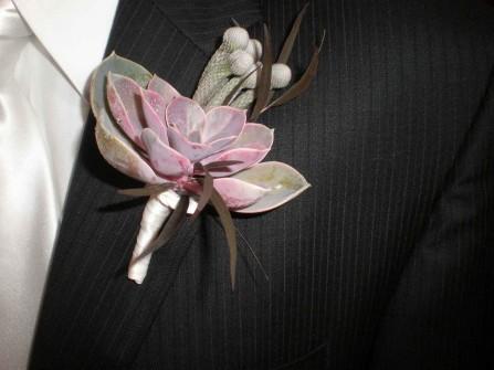 Hoa cài áo chú rể làm từ hoa sen đá và xương rồng