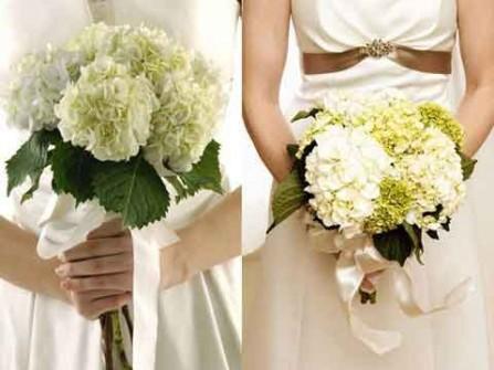 Hoa cưới cầm tay kết từ hoa cẩm tú cầu