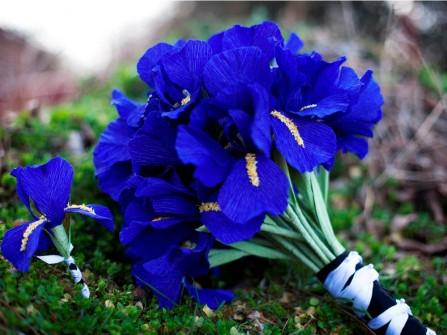 Hoa cưới cầm tay màu xanh dương kết từ hoa diên vĩ