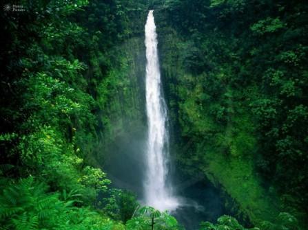 Du ngoạn thiên đường Hawaii