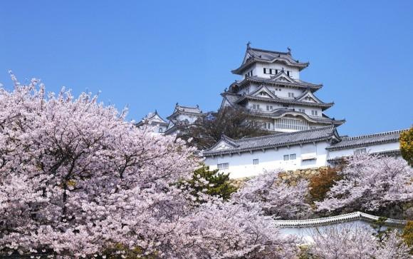 Thưởng thức văn hóa Nhật Bản tại Tokyo