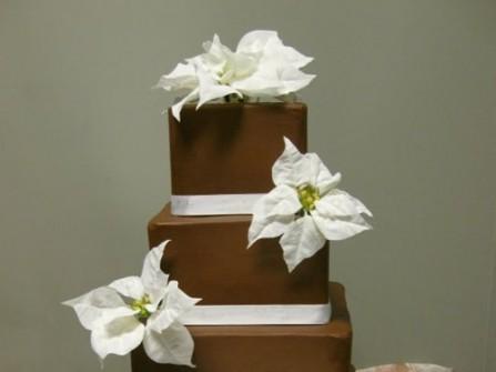 Bánh cưới chocolate vuông viền trắng, hoa trắng