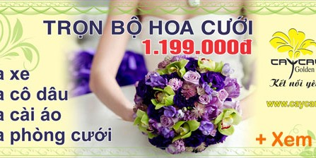 Hoa cưới Cây Cầu Vàng