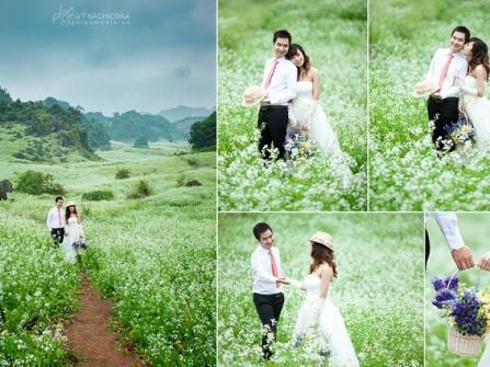 Chụp hình cưới ở vườn hoa cải trắng Mộc Châu