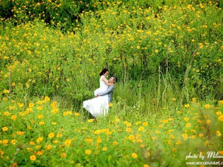 Địa điểm chụp ảnh cưới: Đồi hoa dã quỳ, Đà Lạt