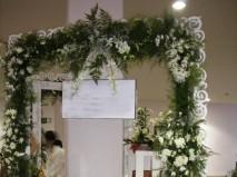 Dịch vụ cưới hỏi Hải Sơn