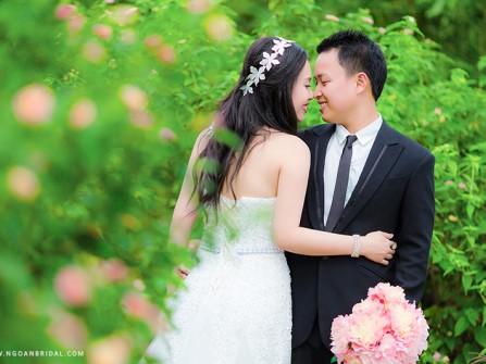 Đồi cỏ lau tại Đà Nẵng