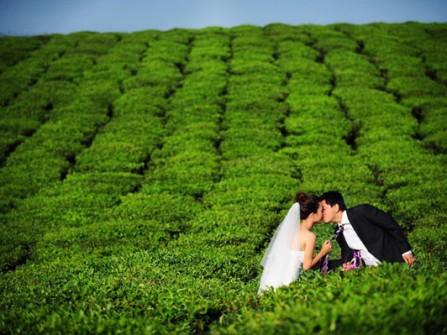 Kinh nghiệm chụp ảnh cưới: Có nên tự chụp ảnh cưới?