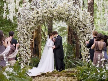 Chụp ảnh cưới với hoa tử đằng quyến rũ