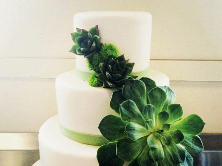 Bánh cưới ấn tượng tạo hình sen đá
