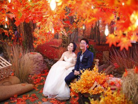 Ấn tượng không gian thu lãng mạn tại Marry Wedding Day TP. HCM 2016