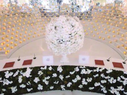 Theme cưới: Rừng lan trắng muốt sang trọng