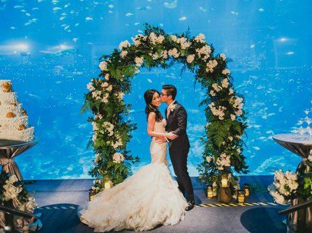 """Huyền ảo tiệc cưới """"dưới"""" lòng đại dương"""