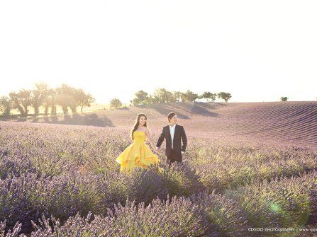 Chụp ảnh cưới đẹp ngất ngây tại cánh đồng hoa Lavender, Pháp