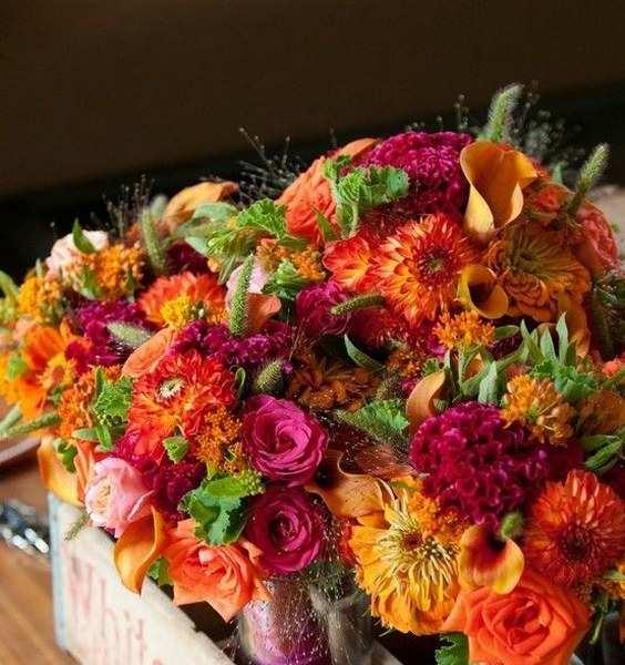 Thổi bừng sức sống và niềm vui ngày cưới với những mảng màu cam rực rỡ và vui nhộn cùng những cánh hoa và vật dụng trang trí sống động!
