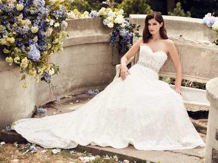 BST váy cưới đẹp cuốn hút của thương hiệu Paloma Blanca