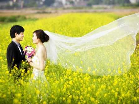 Chụp ảnh cưới với hoa cải vàng của các cặp đôi ở Hà Nội mùa cưới 2018