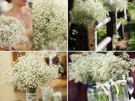 Hóa đám cưới thành vườn địa đàng với hoa baby