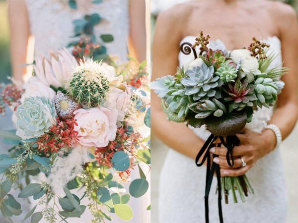 Hoa cưới sen đá 4