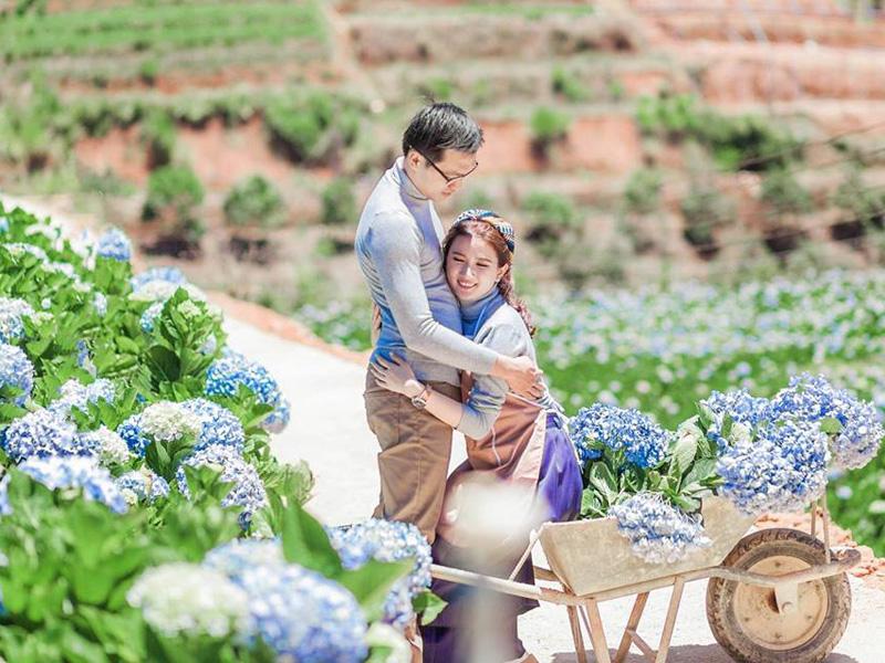 4 điểm chụp ảnh giữa vườn cẩm tú cầu siêu đẹp ở Đà Lạt