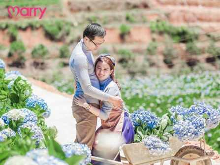 4 vườn hoa cẩm tú cầu siêu lung linh ở Đà Lạt