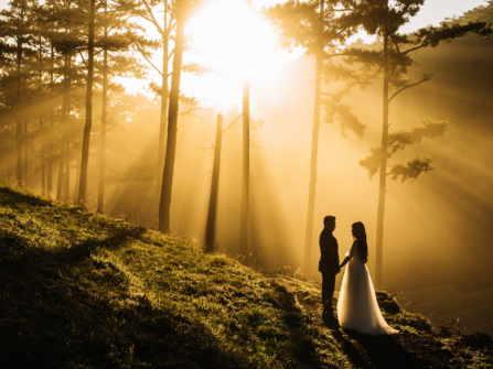 Wedding MIUS