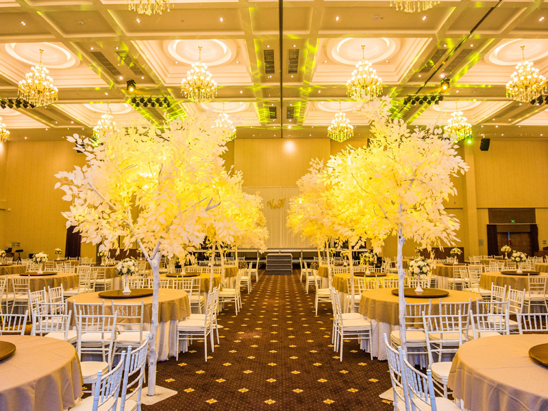 Trung tâm Hội Nghị - Tiệc Cưới Tân Sơn Nhất Pavillon - TP Hồ Chí Minh