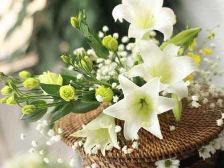 Hoa cưới tháng 4: Loa kèn trắng kiêu sa
