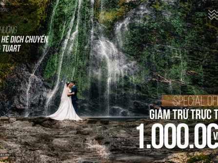 Wedding Plan - Kế hoạch cưới hoàn hảo