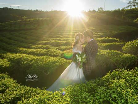 Album cưới ngoại cảnh Đơn Dương chỉ 5.000.000đ